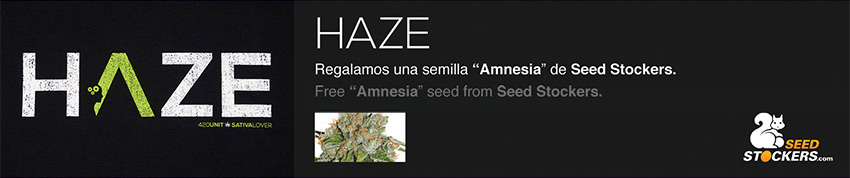 Haze seed stockers 420